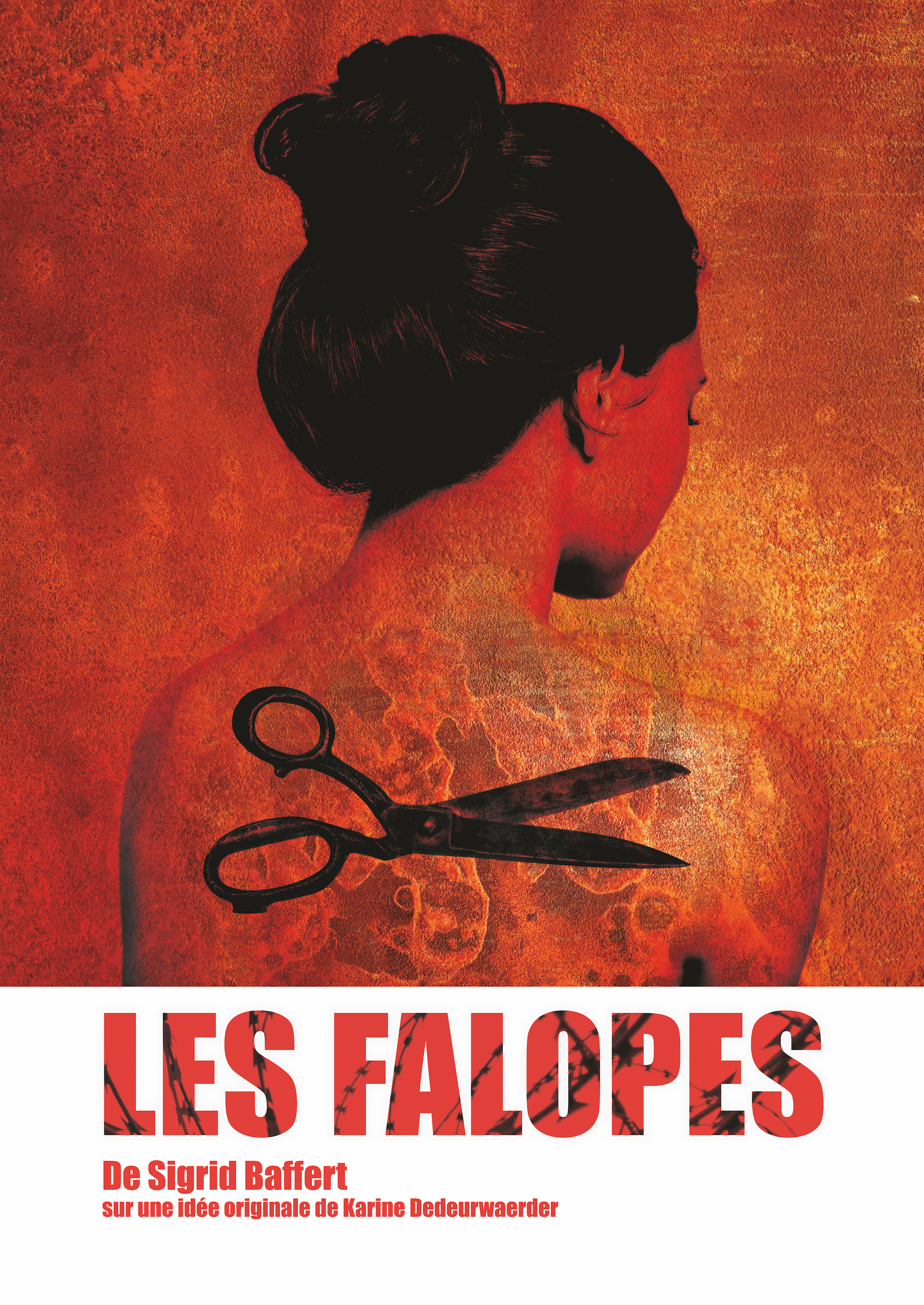 Aff-Falope-3b - copie